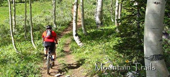Bear Lake Mountain Bike Trails
